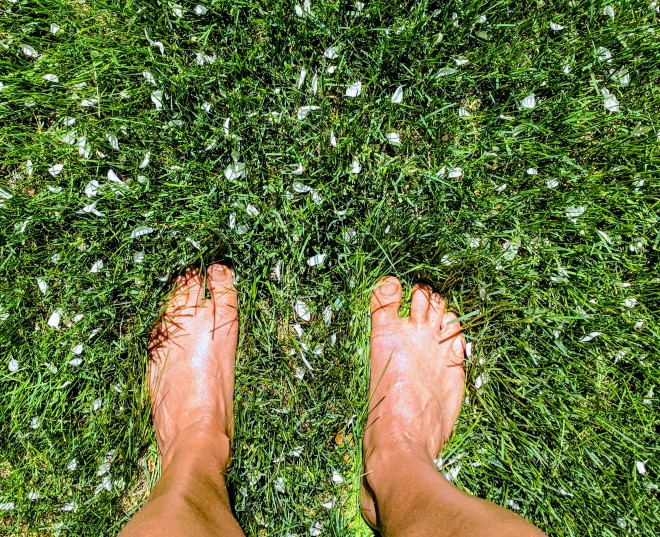 bare feet in the grass